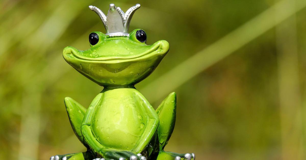 Ο Βασιλιάς Βάτραχος