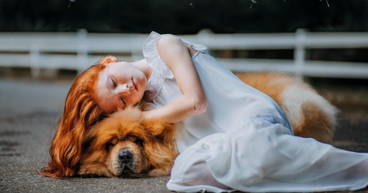 Η Αγάπη Ενός Σκύλου, ένα παραμύθι της Κάτιας Σταύρου
