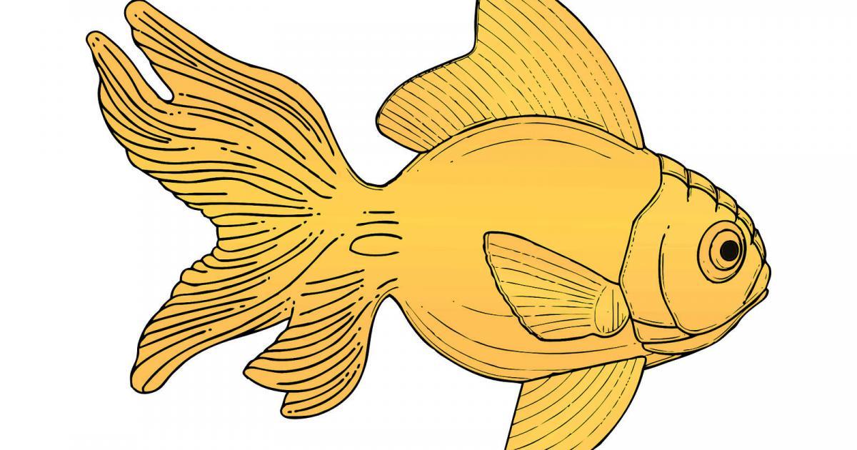 Λαικό παραμύθι: Το χρυσό ψαράκι